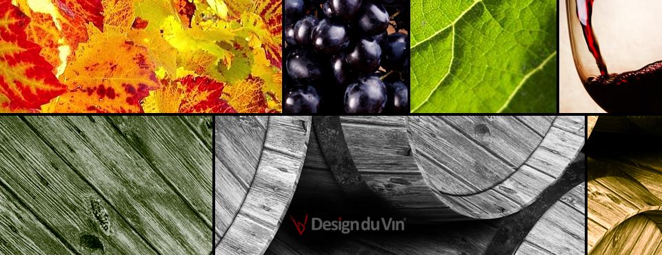 Laurent Bayot, infographiste spécialisé dans le vin